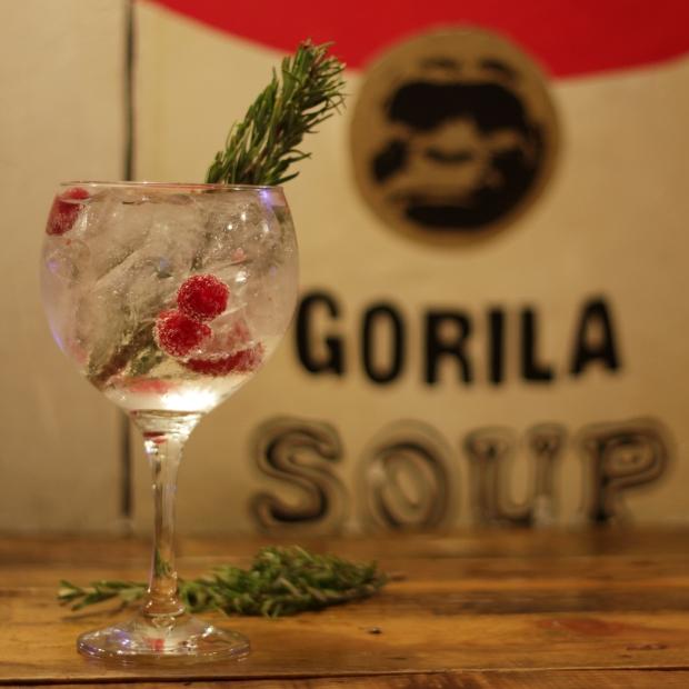 gorila_9361